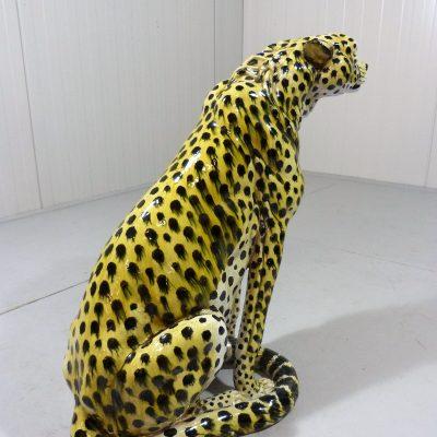 Cheetah Tiger 4